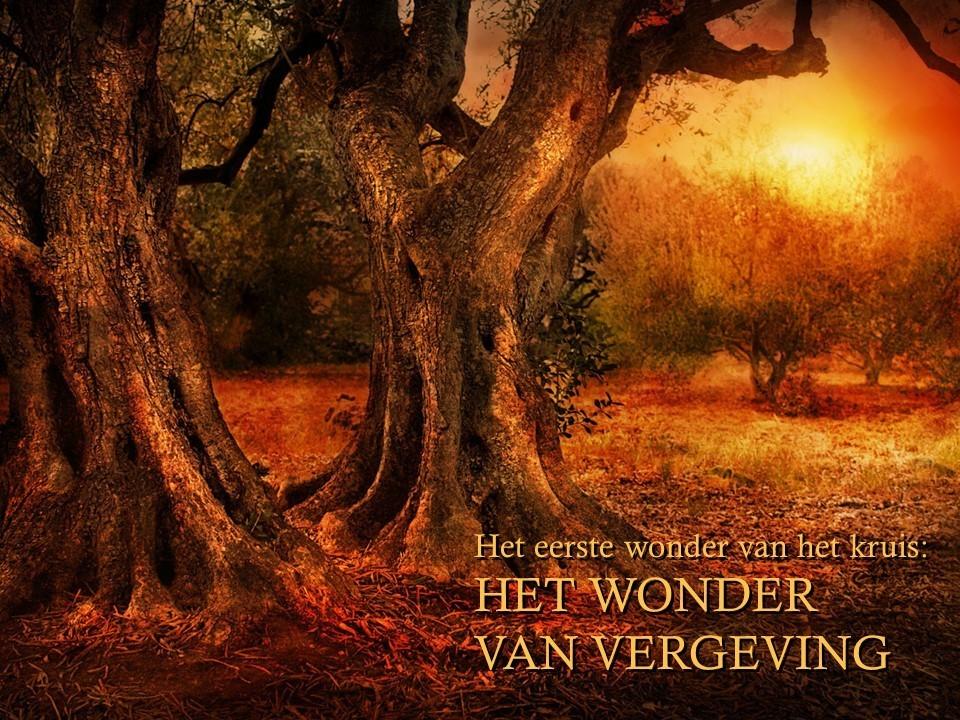 1e-wonder-vh-kruis